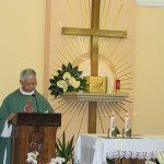 Pilgrimage groups (language Mass)