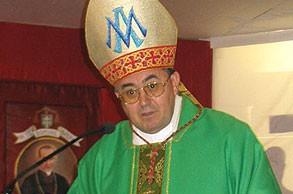 cardinal-vinko-puljic-sarajevo-medjugorje-commission